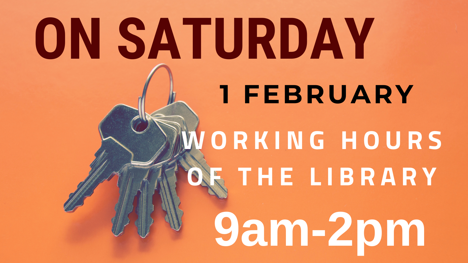 On Saturday 1 February our library is open from 9am until 2pm